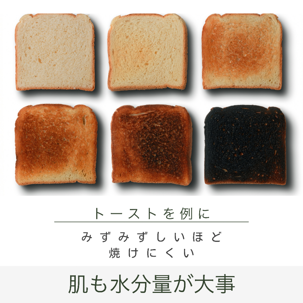 トーストの水分量